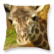 Curious Giraffe Throw Pillow