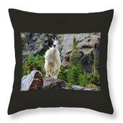 Curious Goat Throw Pillow