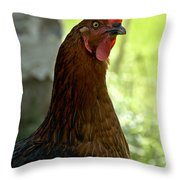 Curious Hen Throw Pillow
