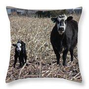 Curious Pair Throw Pillow