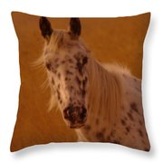 Curious Pony With Spots Throw Pillow