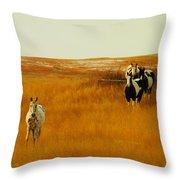 Curious Ponys  Throw Pillow