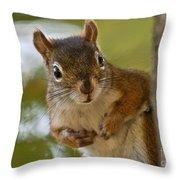 Curious Squirrel Throw Pillow