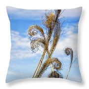 Curled Grasses Throw Pillow