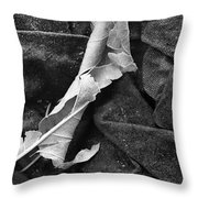 Curled Up For The Winter Throw Pillow