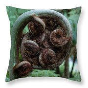 Curley Throw Pillow