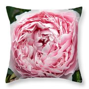 Curly Head Throw Pillow