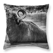 Curly Horns-black And White Throw Pillow