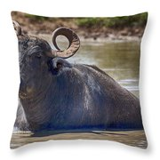 Curly Horns Throw Pillow