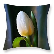Curly Leaf Throw Pillow