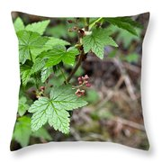 Currant Flower Throw Pillow