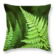 Curved Fern Leaf Throw Pillow