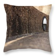 Curved Perspective Throw Pillow