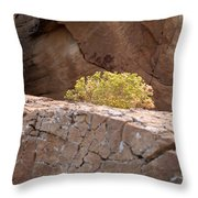 Curved Rocks And Bush Throw Pillow
