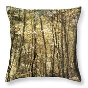 Curved Trunks Throw Pillow