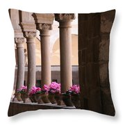 Cusco Peru Throw Pillow