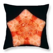 Cushion Star Throw Pillow