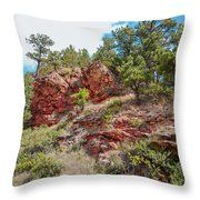 Custer State Park Ecology Throw Pillow