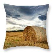 Cut Field Throw Pillow