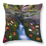 Cut Into Autumn Throw Pillow by Peter Coskun