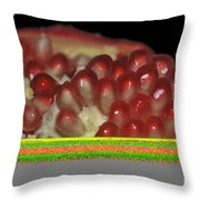 Cut Pomegranate Fruit Throw Pillow