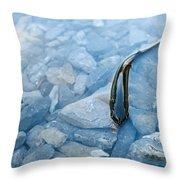 Cut-throat Trout Throw Pillow