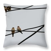 Cut-throat Wires Throw Pillow
