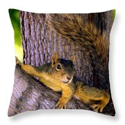 Cute Fuzzy Squirrel In Tree Near Garden Throw Pillow