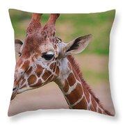 Cute Giraffe Portrait  Throw Pillow