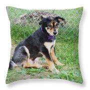 Cute Kody Throw Pillow