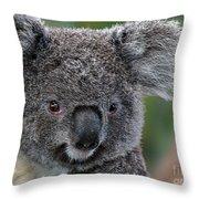 Cute Look Throw Pillow
