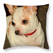 Cute N Sassy Throw Pillow