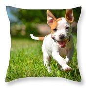 Cute Stafford Puppy Running On Field Throw Pillow