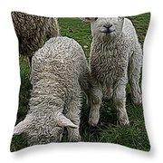 Cutest Lamb Ever Throw Pillow