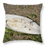 Cuttlefish Bone 2 Throw Pillow