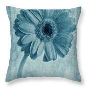 Cyanotype Gerbera Hybrida With Textures Throw Pillow