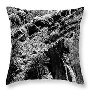 Cycads At Cliffs' Edge Black And White Throw Pillow