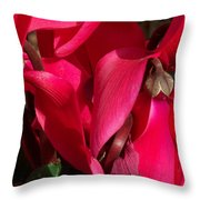 Cyclamen Throw Pillow