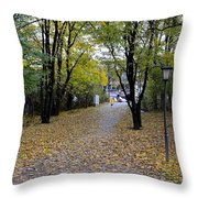 Cyclist And Dog Entering Park Throw Pillow by Imran Ahmed
