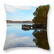 Cypres Reflections Throw Pillow