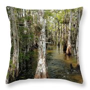Cypres Swamp-1 Throw Pillow