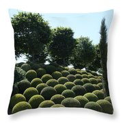 Cypress And Boxwood Garden Throw Pillow