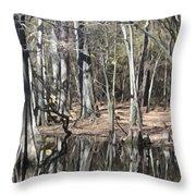 Cypress Bog Throw Pillow