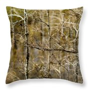 Cypress Branches Throw Pillow