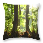 Cypress Forest Throw Pillow