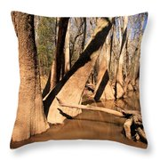 Cypress Hallway Throw Pillow