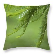 Cypress In The Mist - Art Print Throw Pillow