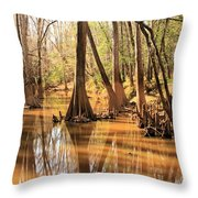 Cypress In The Swamp Throw Pillow