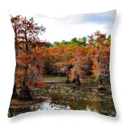 Cypress Isles Throw Pillow