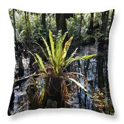 Cypress Knees And Ferns Throw Pillow